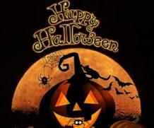 O Halloween é Irlandês!!!