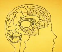 Doença de Alzheimer, bem explicado em filme de 3 minutos…