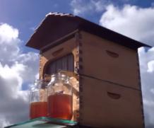 Conheça Flow Hive – Um sonho para o apicultor